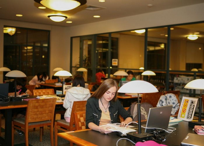Image of students studying.