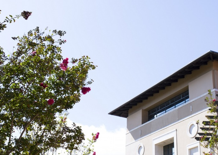 Image of the roof of the library with a tree in the foreground.