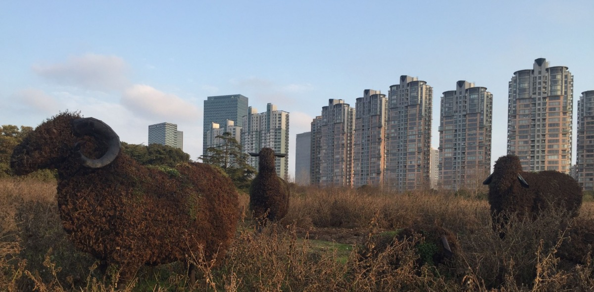 Mannequins of sheep standing in a field with tall residential buildings rising in the background.