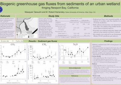 Image of an ES student research poster.