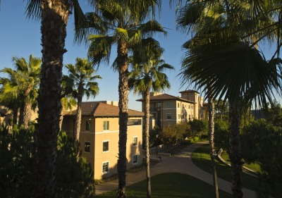 Residence halls with palm trees