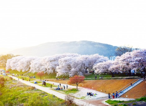 Panoramic view of scenery in Japan